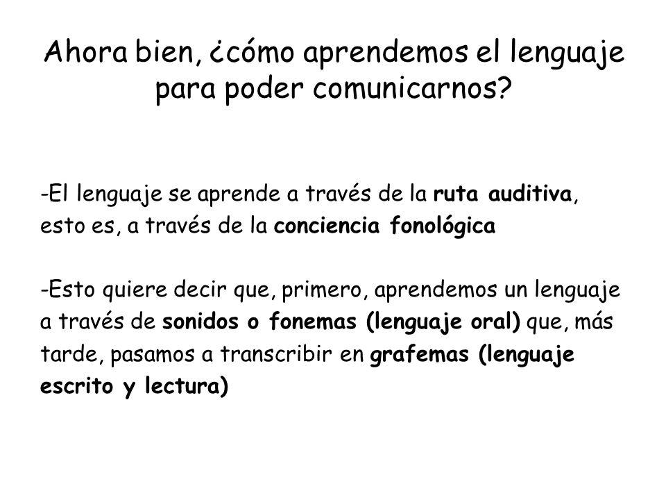 Ahora bien, ¿cómo aprendemos el lenguaje para poder comunicarnos