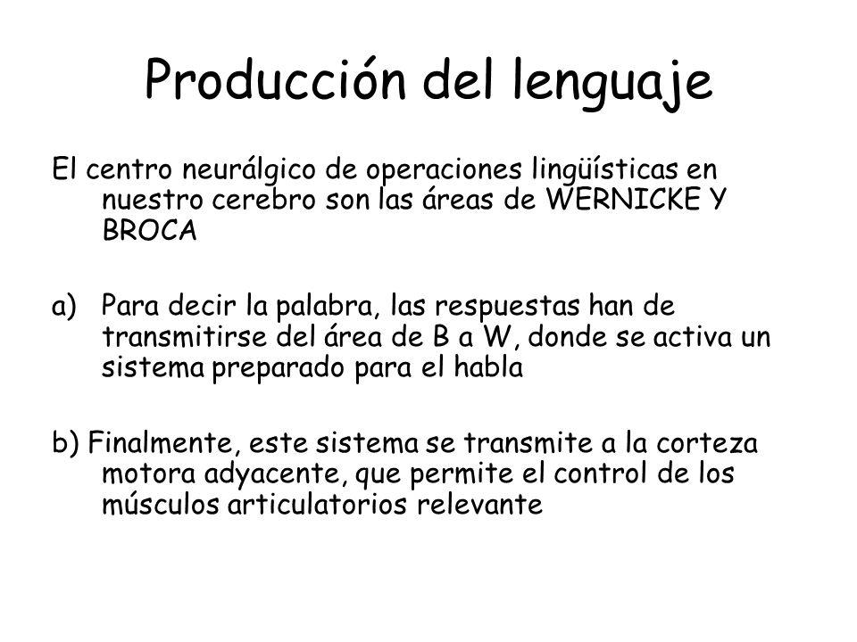 Producción del lenguaje