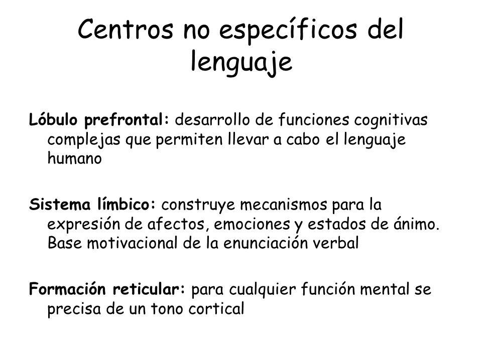 Centros no específicos del lenguaje