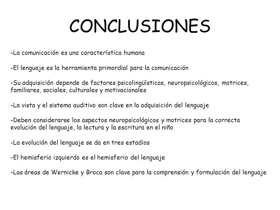 CONCLUSIONES -La comunicación es una característica humana