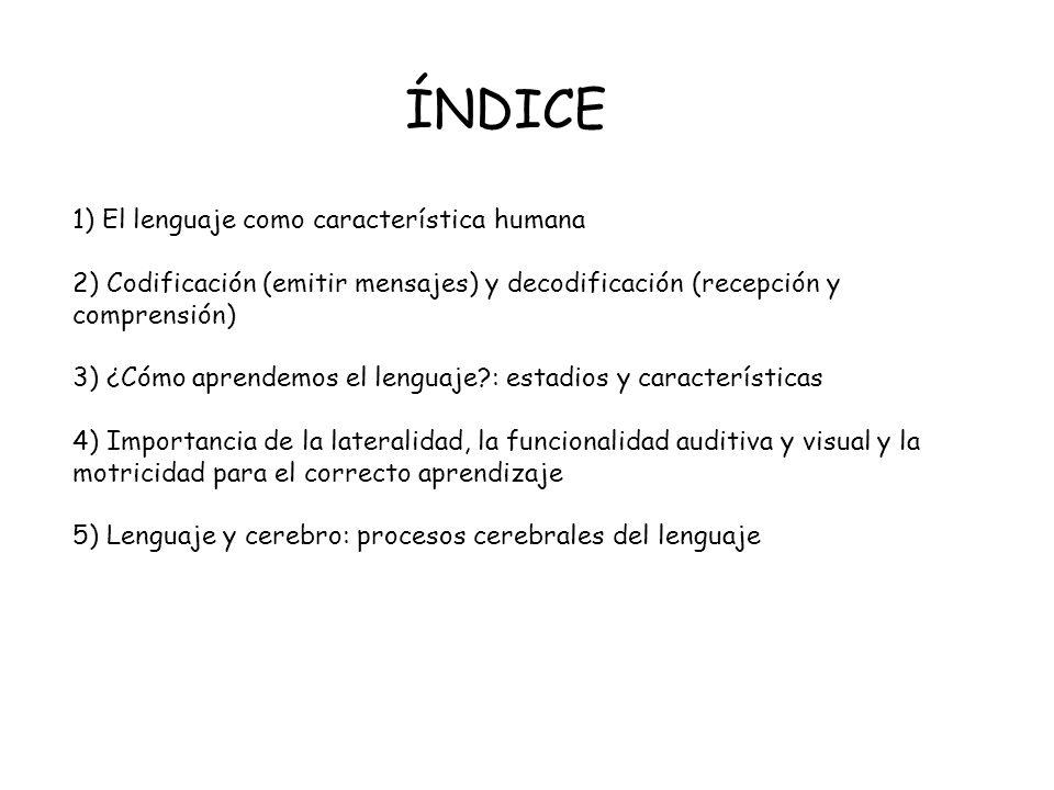ÍNDICE 1) El lenguaje como característica humana