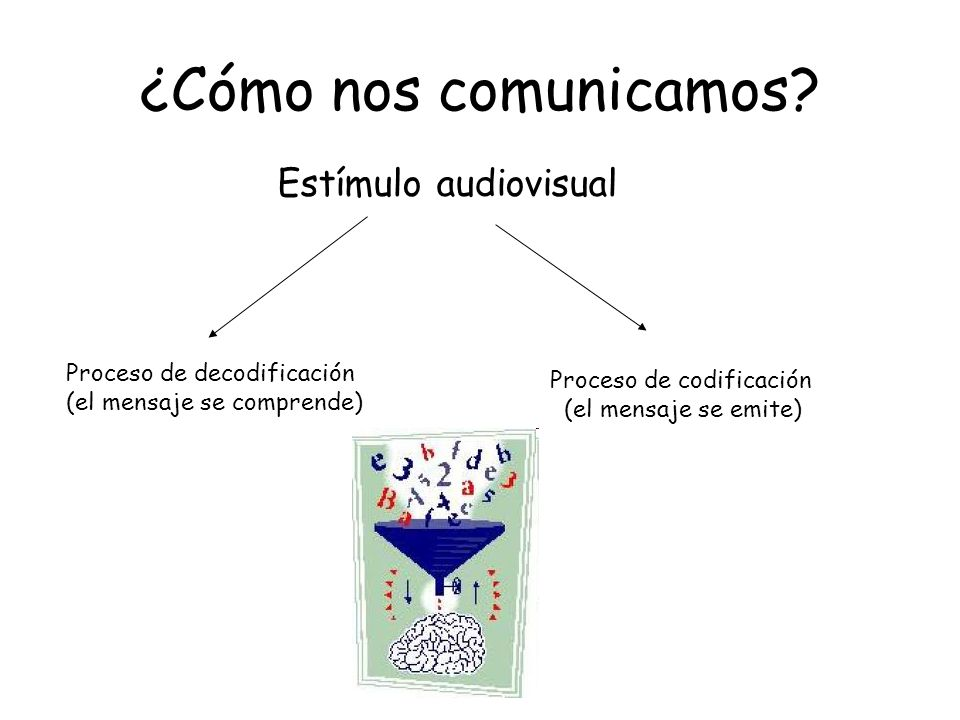¿Cómo nos comunicamos Estímulo audiovisual Proceso de decodificación