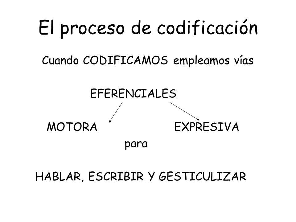 El proceso de codificación