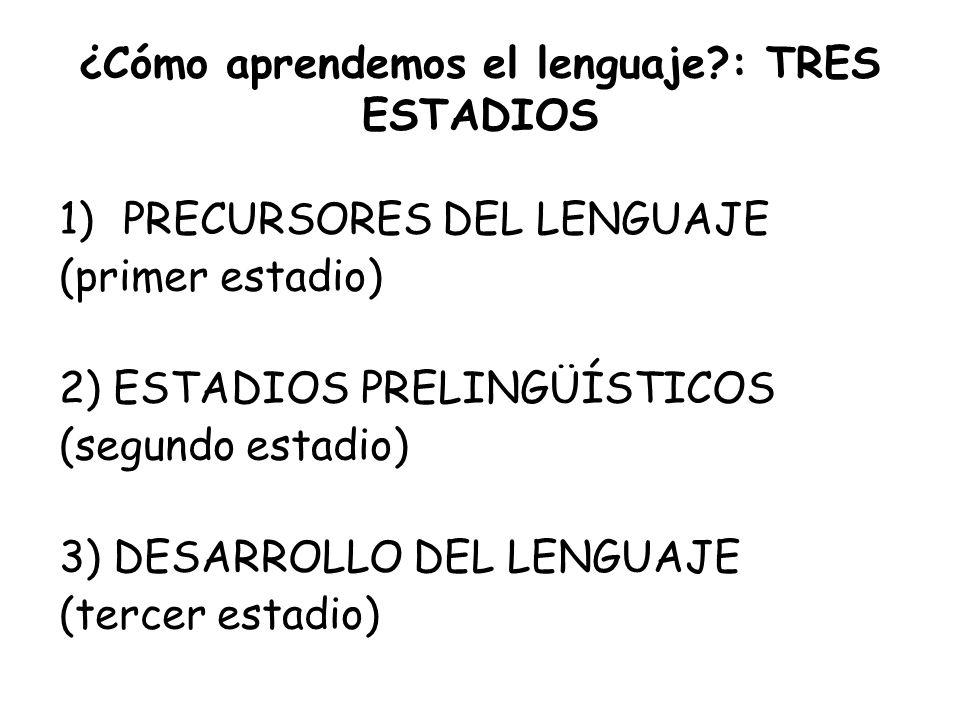¿Cómo aprendemos el lenguaje : TRES ESTADIOS