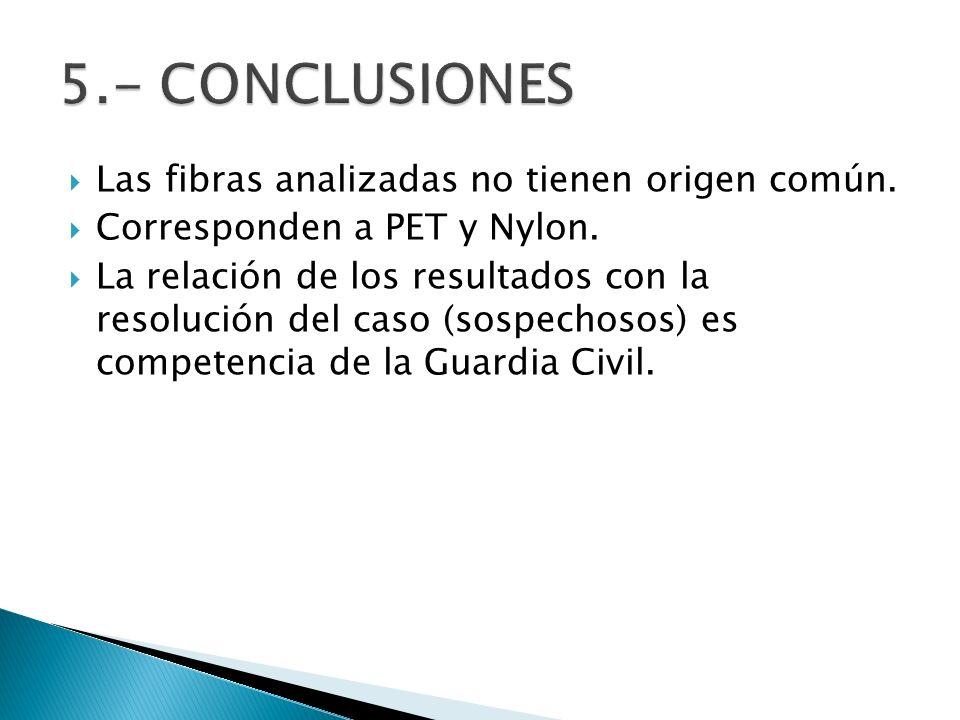 5.- CONCLUSIONES Las fibras analizadas no tienen origen común.