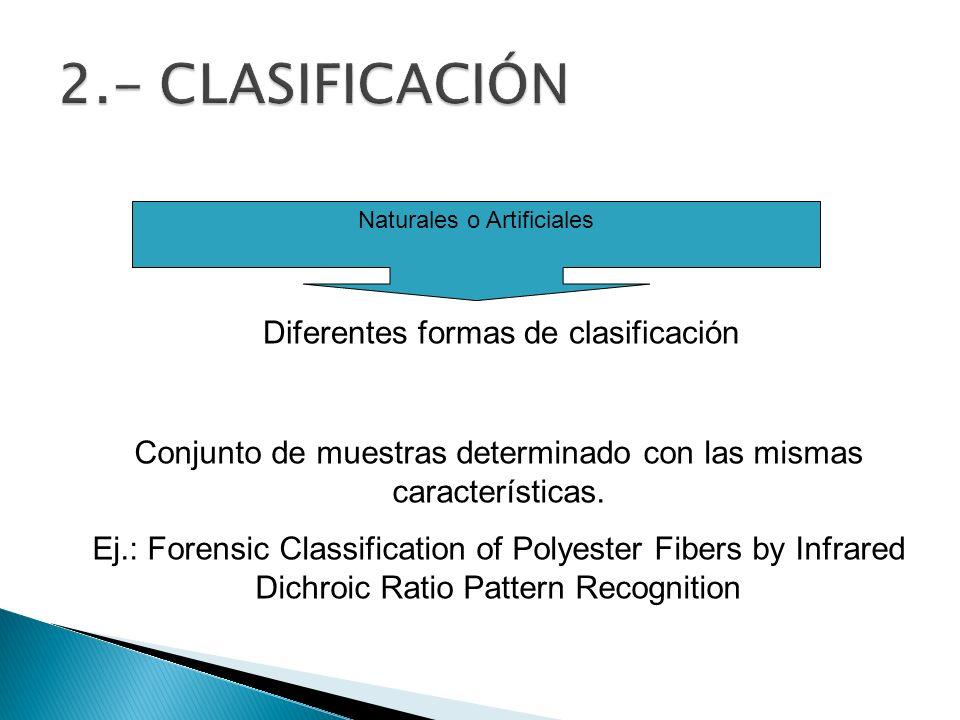 2.- CLASIFICACIÓN Diferentes formas de clasificación