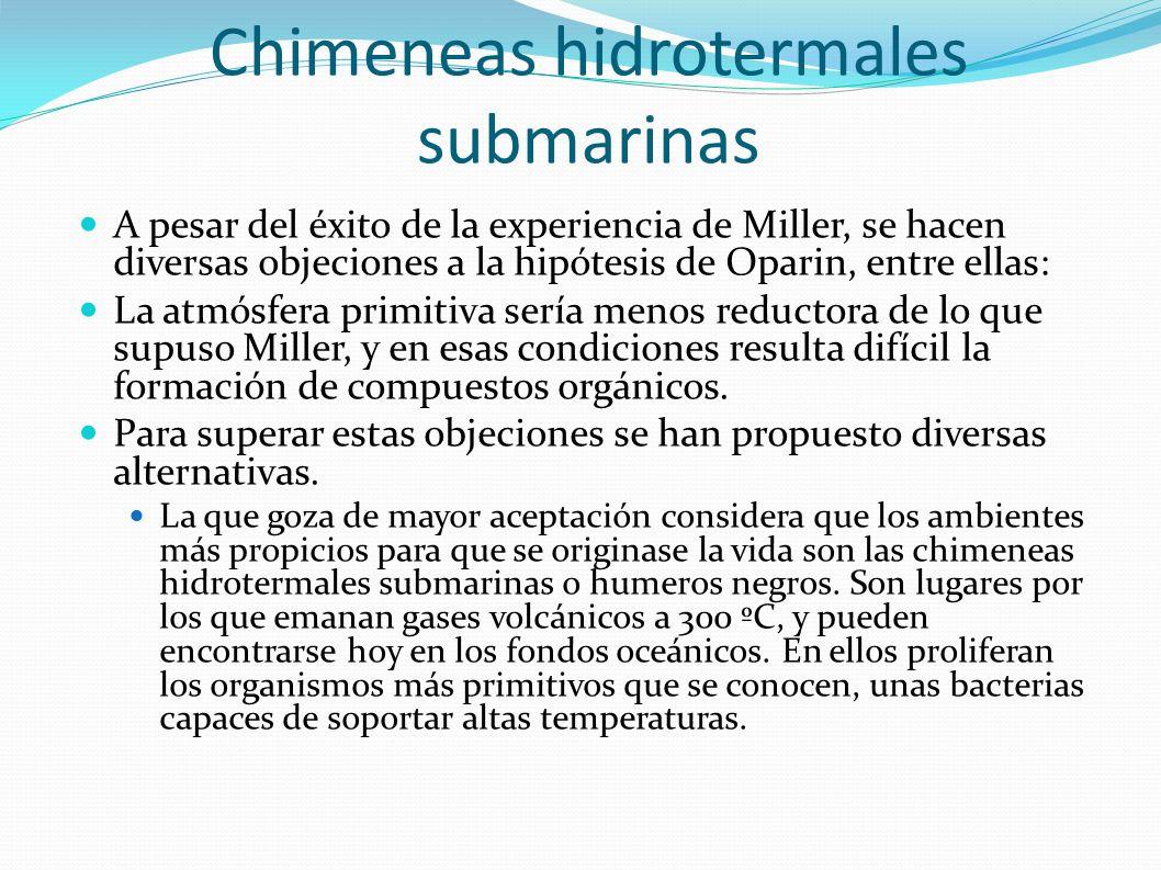 Chimeneas hidrotermales submarinas