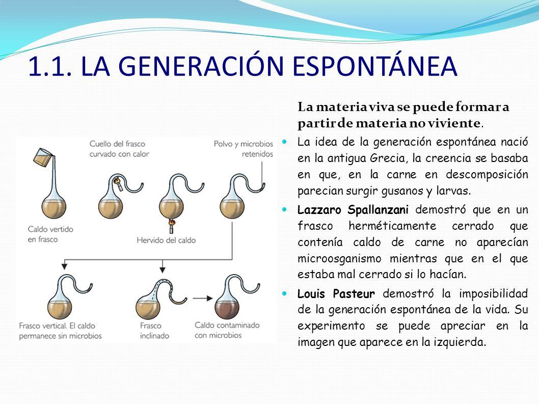 1.1. LA GENERACIÓN ESPONTÁNEA