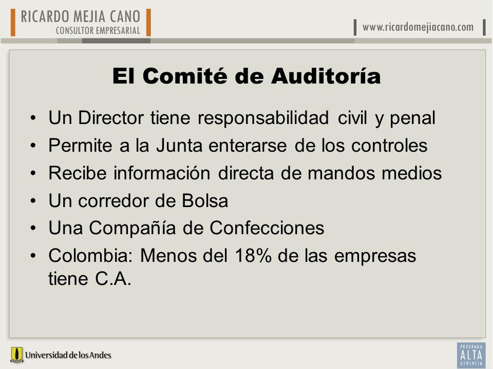 El Comité de Auditoría Un Director tiene responsabilidad civil y penal