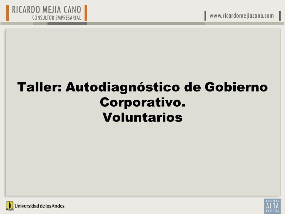 Taller: Autodiagnóstico de Gobierno Corporativo. Voluntarios