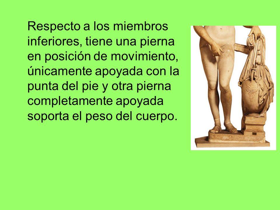 Respecto a los miembros inferiores, tiene una pierna en posición de movimiento, únicamente apoyada con la punta del pie y otra pierna completamente apoyada soporta el peso del cuerpo.