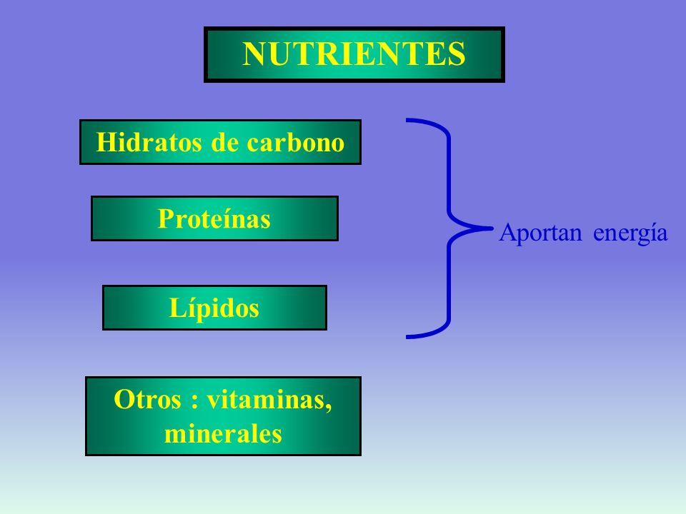 Otros : vitaminas, minerales