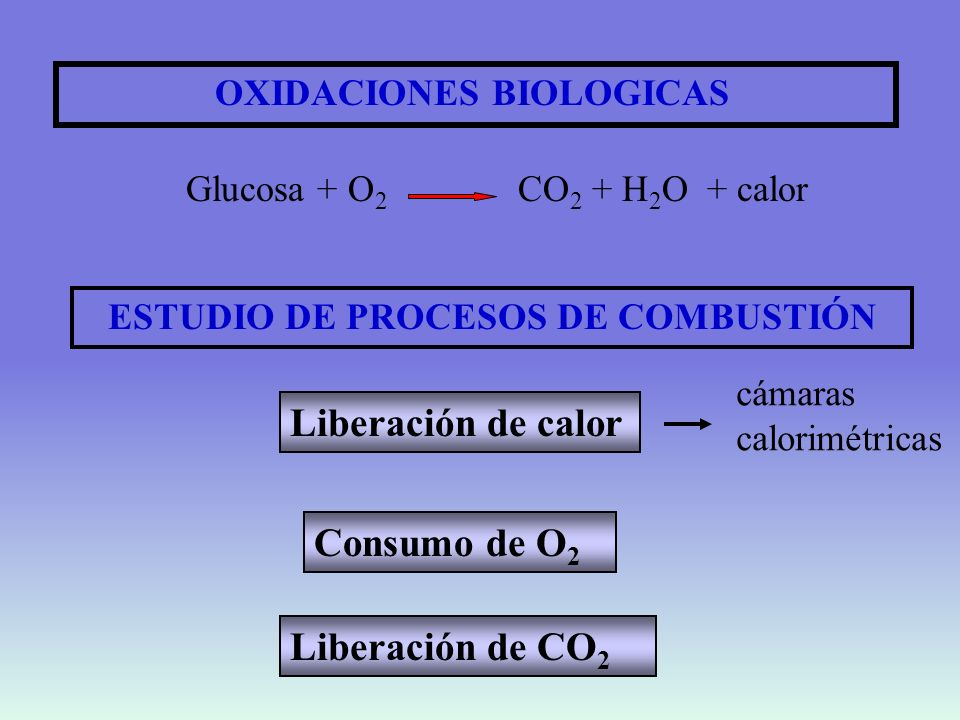 ESTUDIO DE PROCESOS DE COMBUSTIÓN