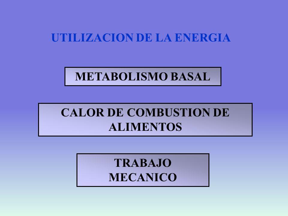 CALOR DE COMBUSTION DE ALIMENTOS