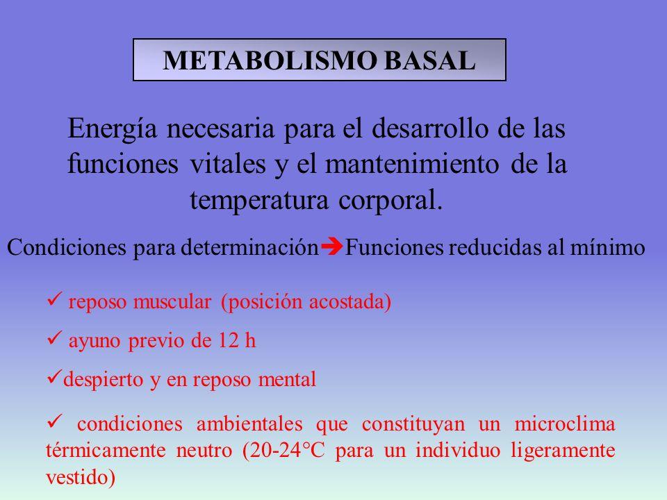 METABOLISMO BASALEnergía necesaria para el desarrollo de las funciones vitales y el mantenimiento de la temperatura corporal.