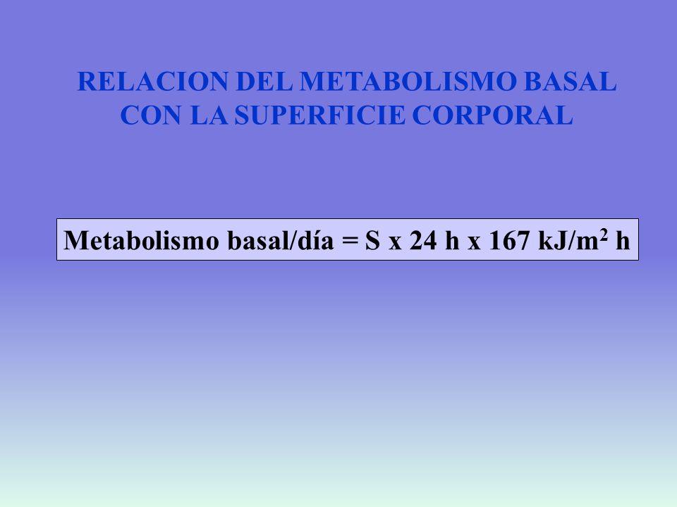 RELACION DEL METABOLISMO BASAL CON LA SUPERFICIE CORPORAL