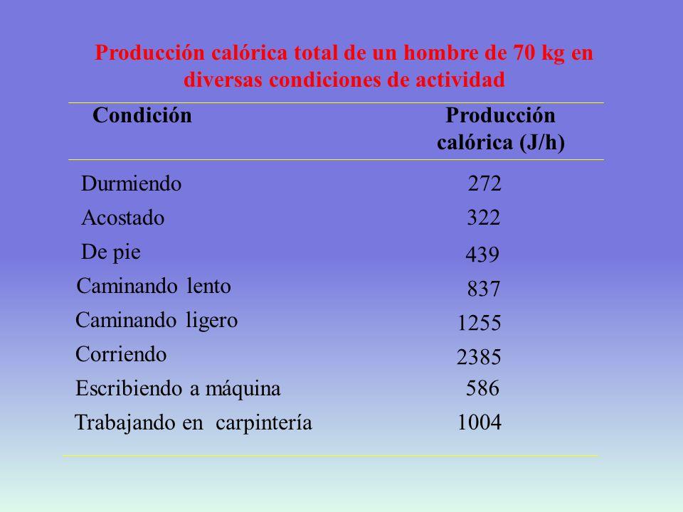 Producción calórica (J/h)