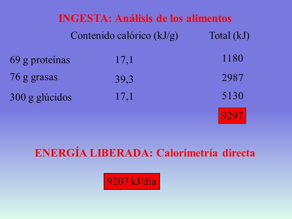 INGESTA: Análisis de los alimentos