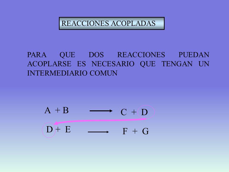 A + B C + D D + E F + G REACCIONES ACOPLADAS