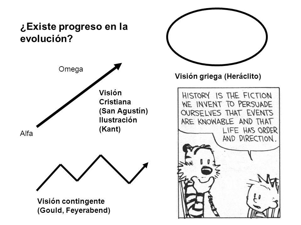 ¿Existe progreso en la evolución