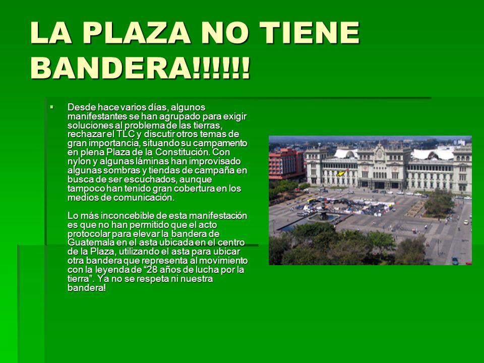 LA PLAZA NO TIENE BANDERA!!!!!!