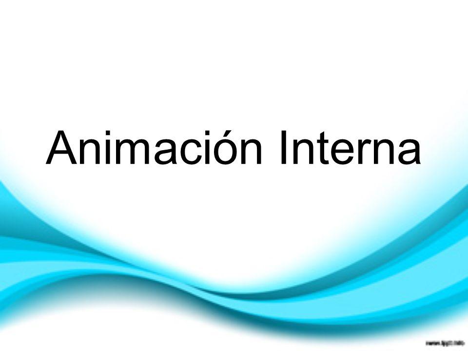 Animación Interna