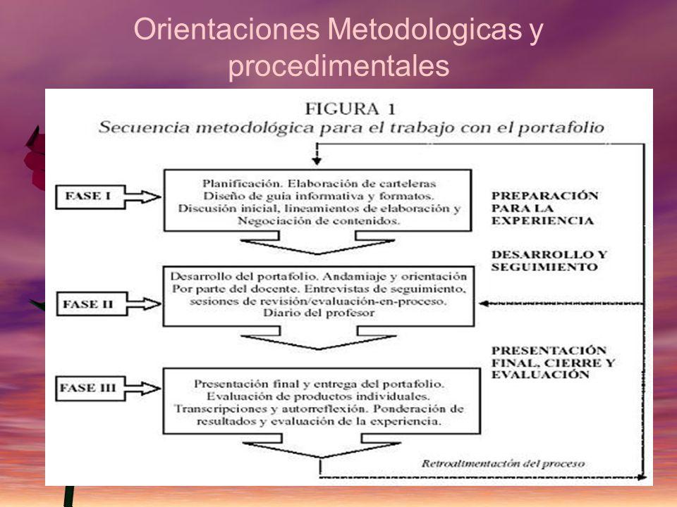 Orientaciones Metodologicas y procedimentales