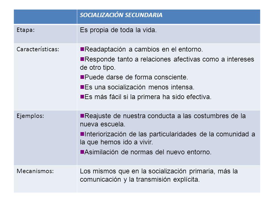 SOCIALIZACIÓN SECUNDARIA