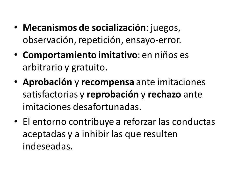 Mecanismos de socialización: juegos, observación, repetición, ensayo-error.