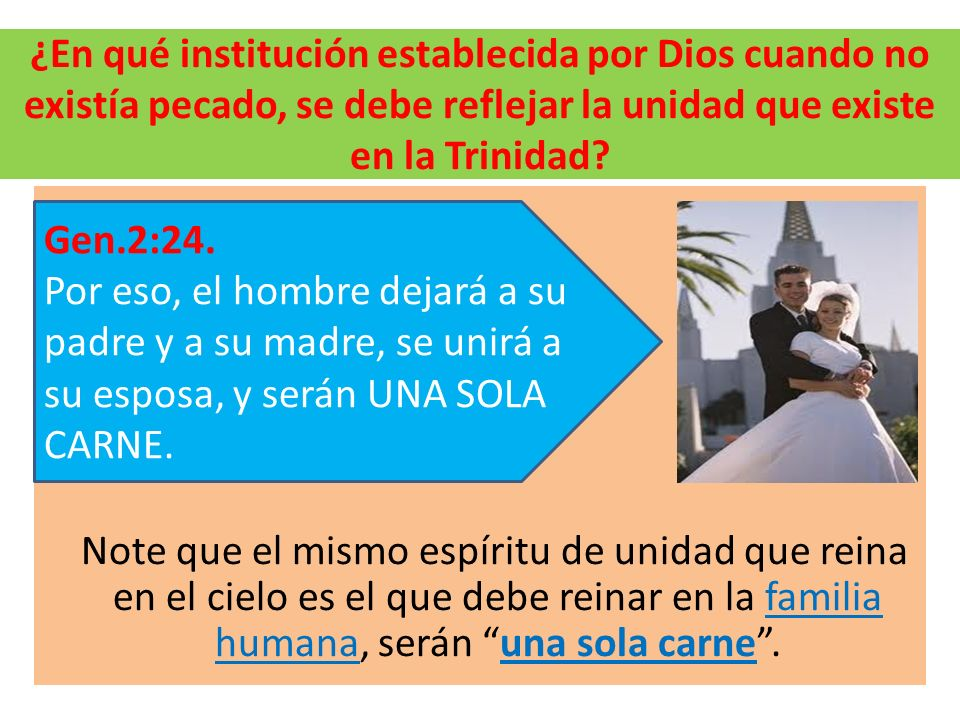 ¿En qué institución establecida por Dios cuando no existía pecado, se debe reflejar la unidad que existe en la Trinidad