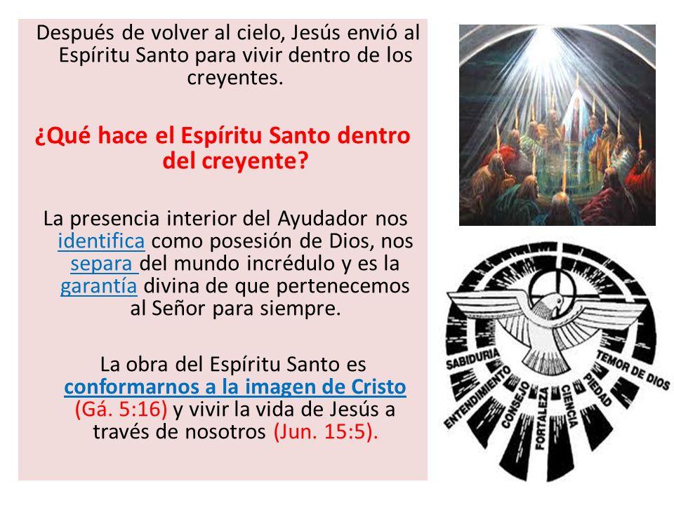 ¿Qué hace el Espíritu Santo dentro del creyente
