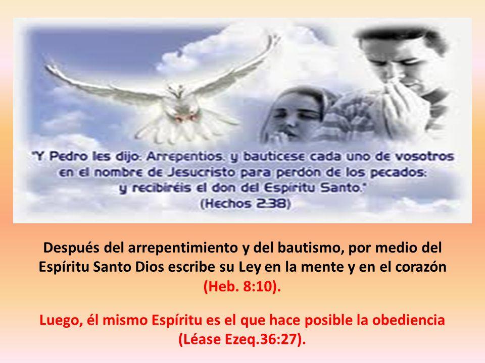 Después del arrepentimiento y del bautismo, por medio del Espíritu Santo Dios escribe su Ley en la mente y en el corazón (Heb. 8:10).