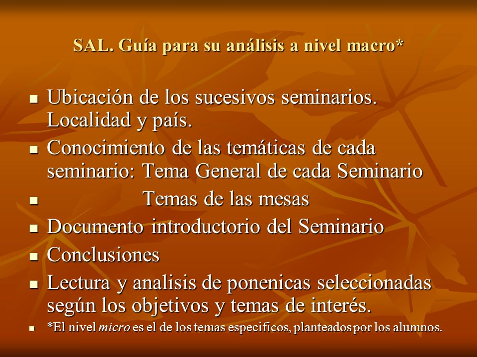 SAL. Guía para su análisis a nivel macro*