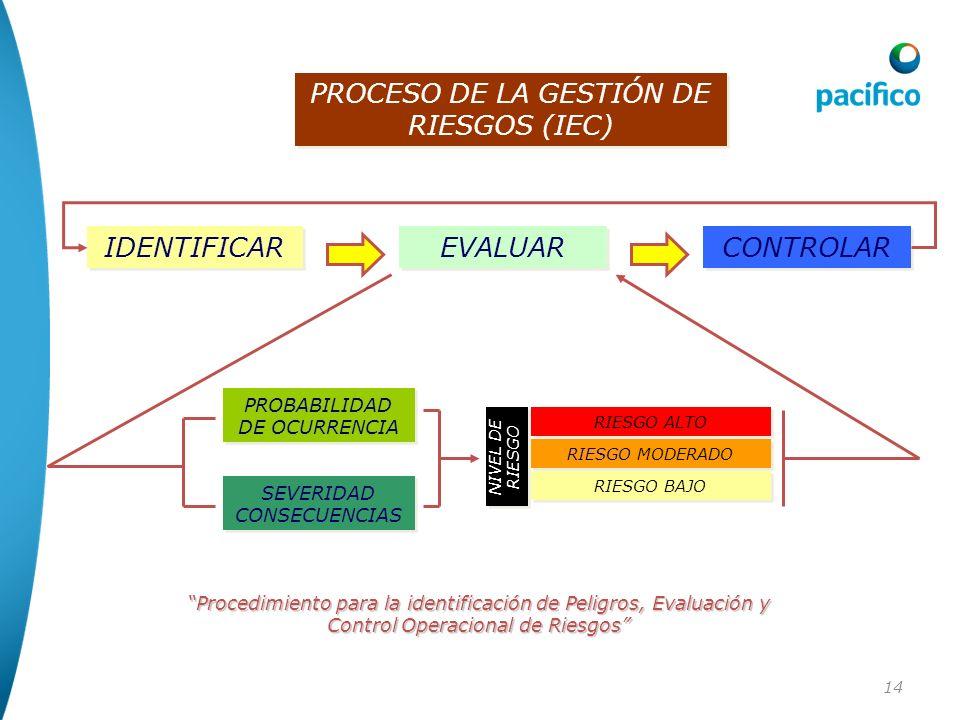 PROCESO DE LA GESTIÓN DE RIESGOS (IEC)