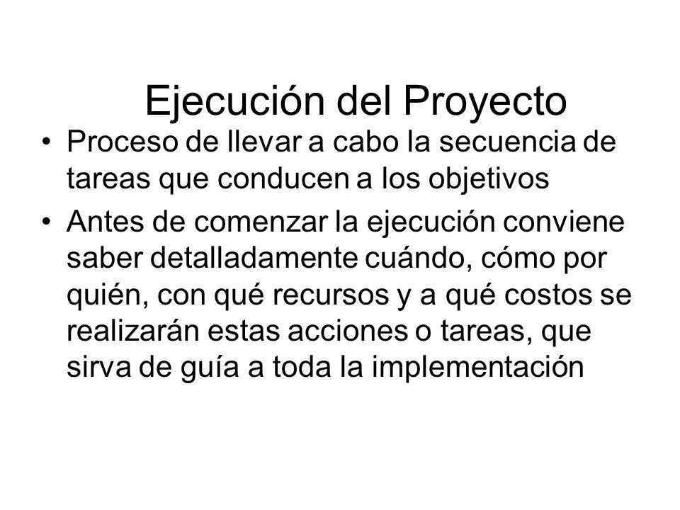 Ejecución del Proyecto