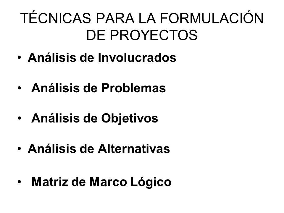 TÉCNICAS PARA LA FORMULACIÓN DE PROYECTOS