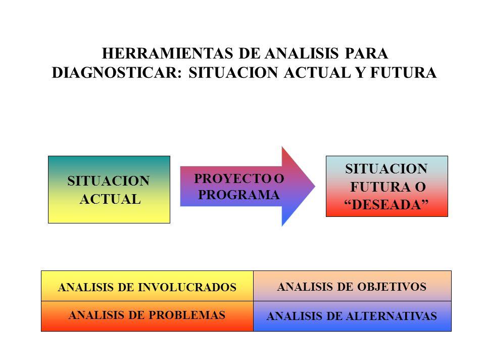 HERRAMIENTAS DE ANALISIS PARA DIAGNOSTICAR: SITUACION ACTUAL Y FUTURA