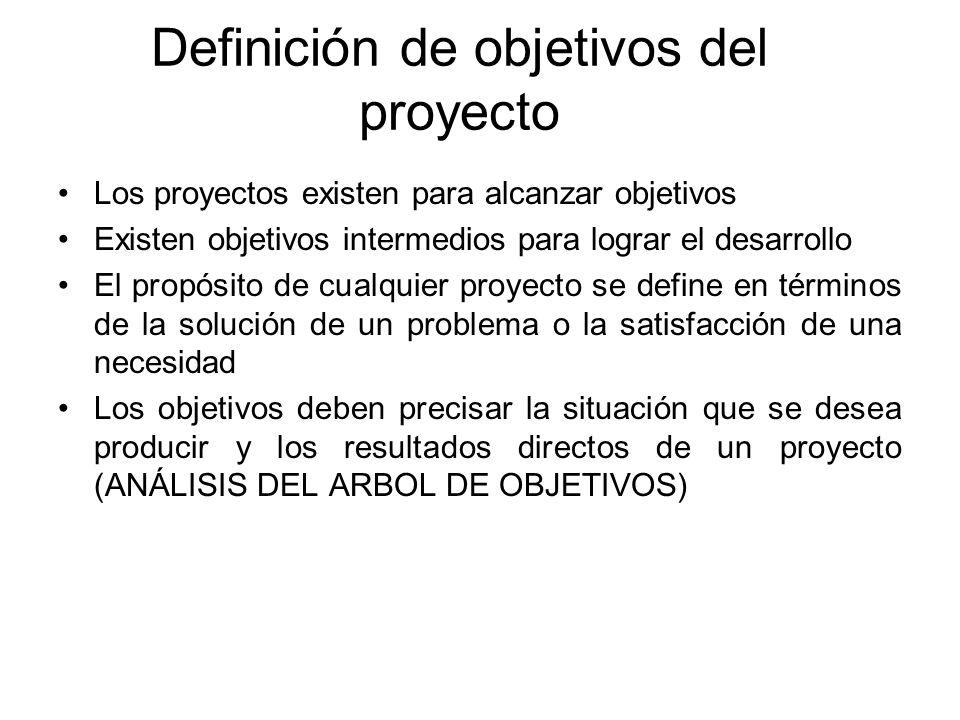 Definición de objetivos del proyecto