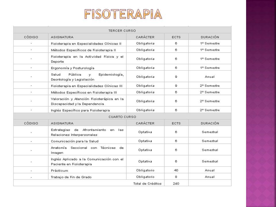FISOTERAPIA
