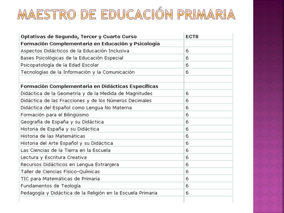 Maestro de educación primaria