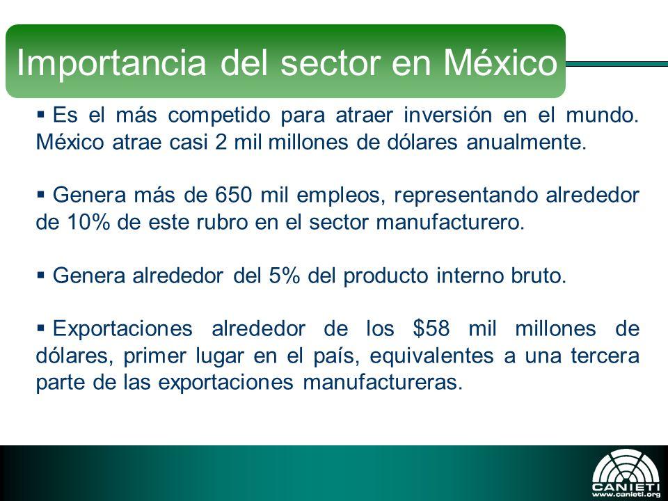 Importancia del sector en México