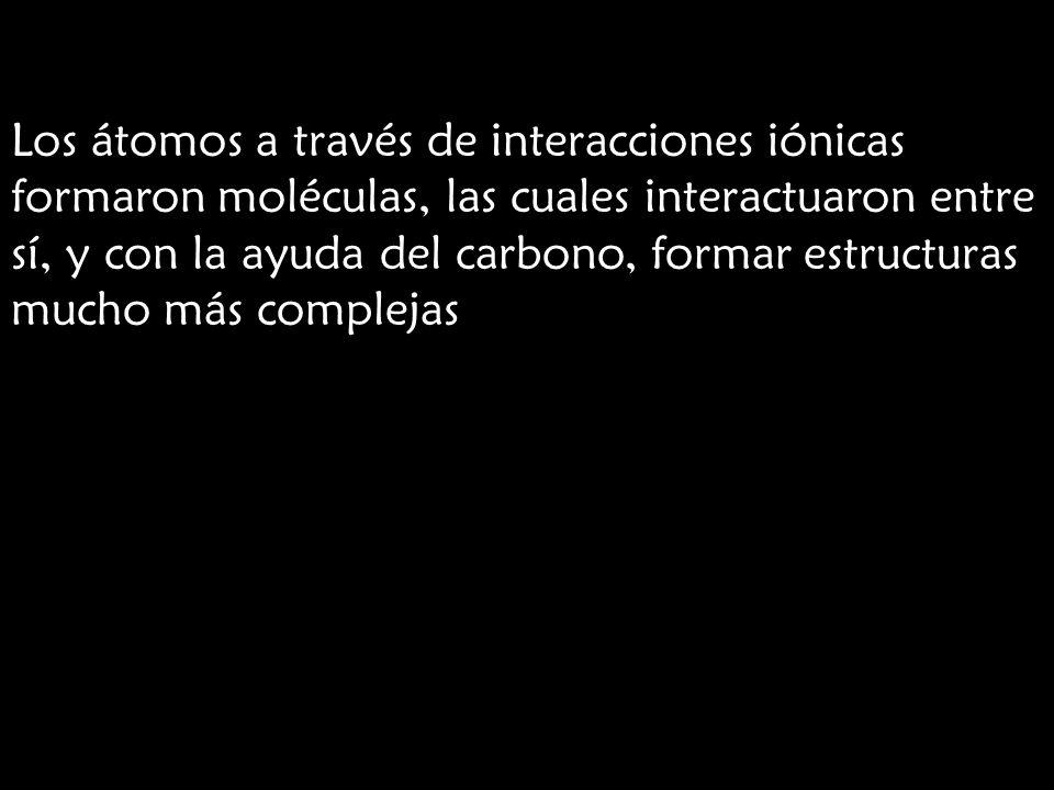 Los átomos a través de interacciones iónicas formaron moléculas, las cuales interactuaron entre sí, y con la ayuda del carbono, formar estructuras mucho más complejas