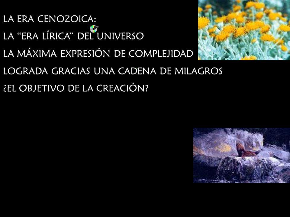 LA ERA CENOZOICA: LA ERA LÍRICA DEL UNIVERSO. LA MÁXIMA EXPRESIÓN DE COMPLEJIDAD. LOGRADA GRACIAS UNA CADENA DE MILAGROS.