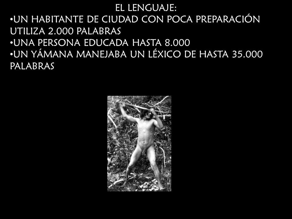 EL LENGUAJE: UN HABITANTE DE CIUDAD CON POCA PREPARACIÓN UTILIZA 2.000 PALABRAS. UNA PERSONA EDUCADA HASTA 8.000.