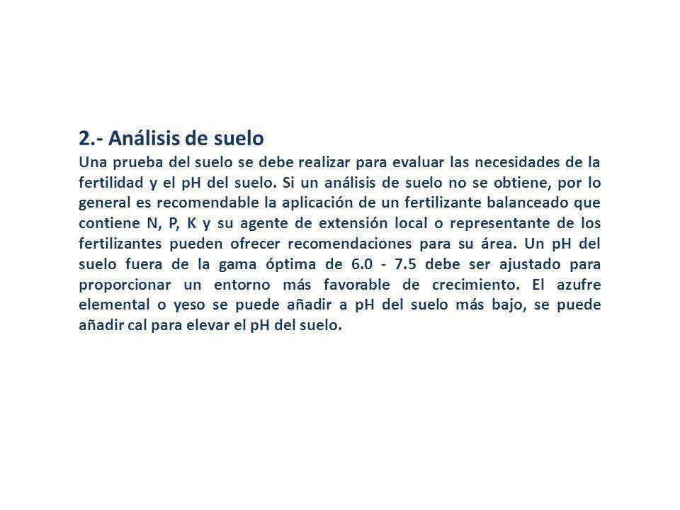 2.- Análisis de suelo