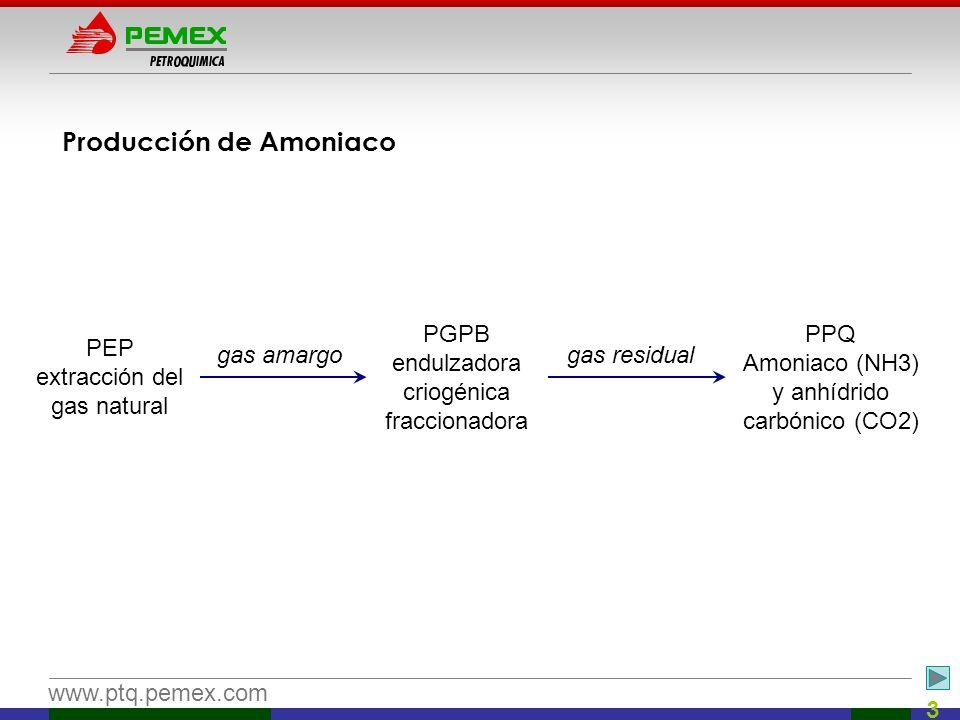 Producción de Amoniaco
