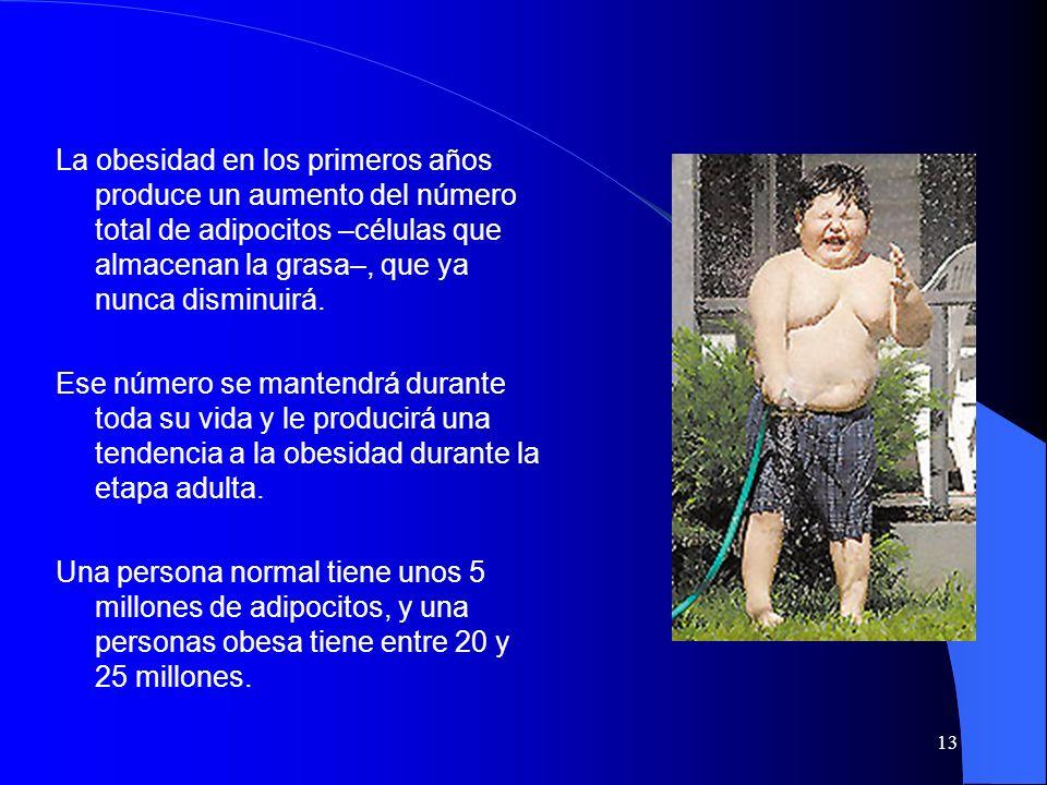 La obesidad en los primeros años produce un aumento del número total de adipocitos –células que almacenan la grasa–, que ya nunca disminuirá.