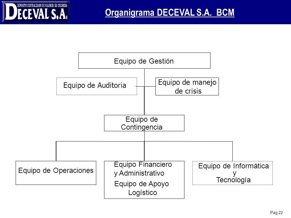Organigrama DECEVAL S.A. BCM