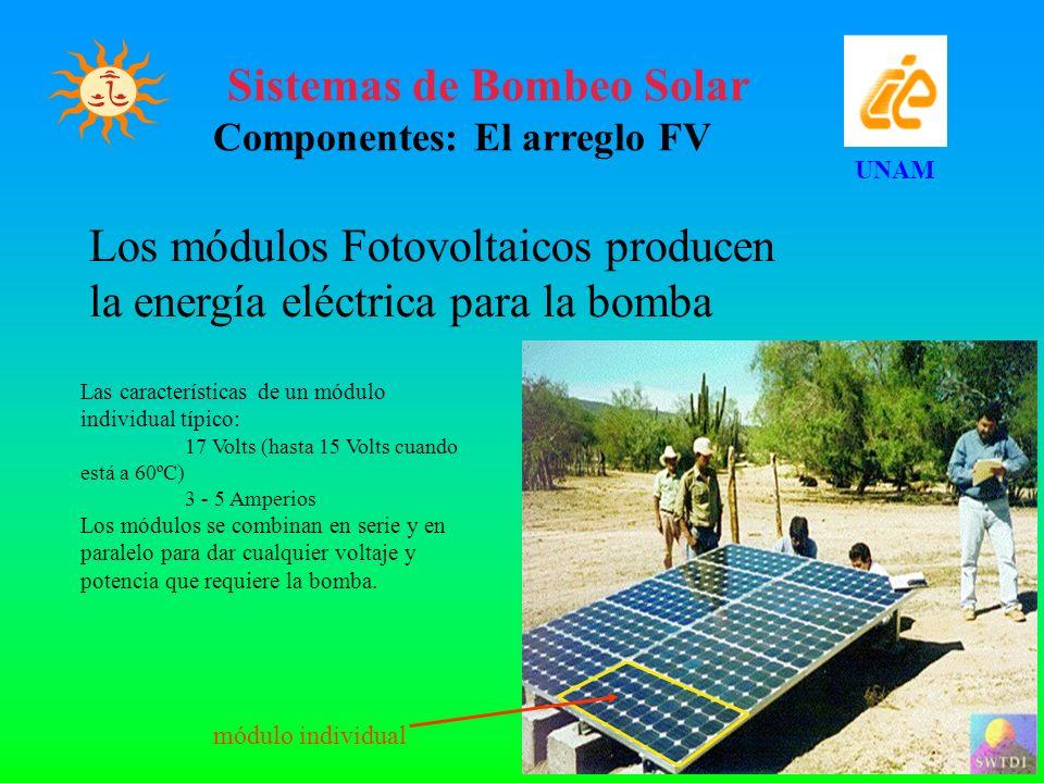 Los módulos Fotovoltaicos producen la energía eléctrica para la bomba