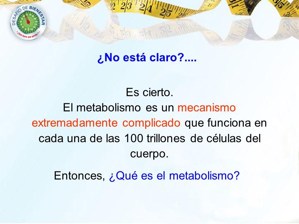 El metabolismo es un mecanismo